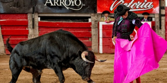 Pachuca y Arroyo cierran primera fase de 'Descubriendo un Torero'