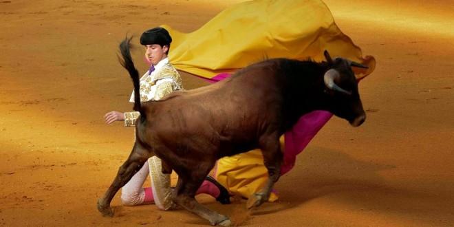 Cinco festejo del serial Descubriendo un torero, este fin de semana
