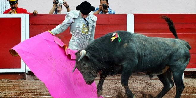 'El toro y el toreo los tengo en la mente': Diego Emilio