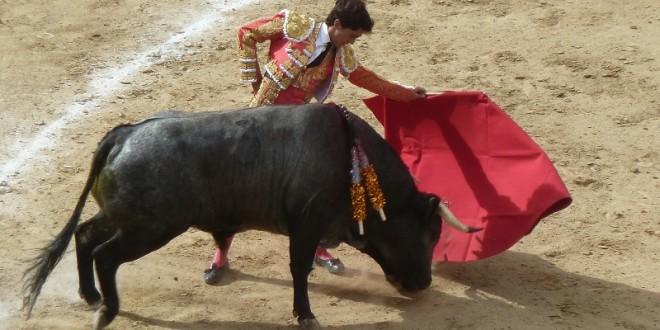 'Para ser alguien en el toreo hay que apostar fuerte': El Capea