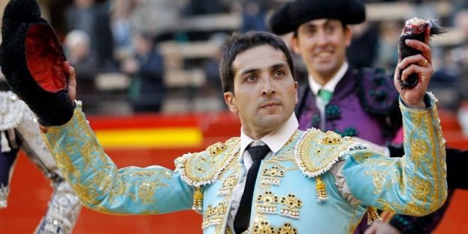 Solitario apéndice para Castaño en Málaga