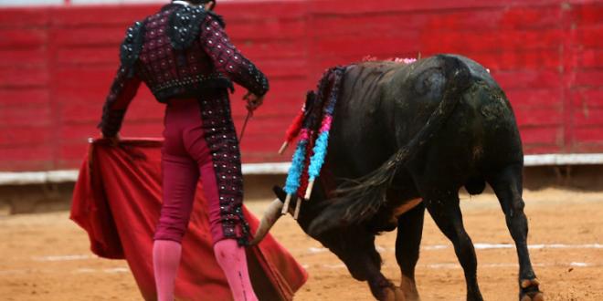 Buscan presentar la tauromaquia ante la UNESCO