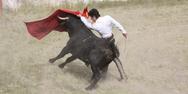 Entrena fuerte Pizarro para presentarse en la México