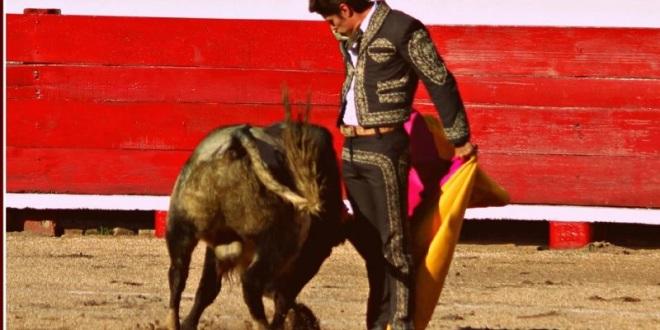 Sendas orejas a Pizarro y 'El Capea'