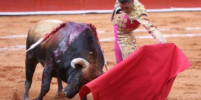 ZOTOLUCO no actuará en Texcoco; una FIGURA no SUSTITUYE a ningún OTRO ESPADA
