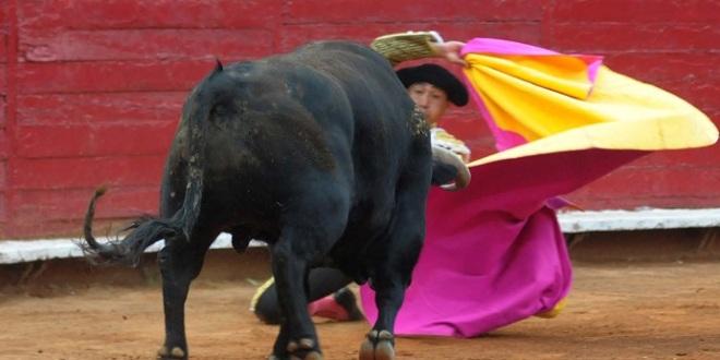 Resumen de la primera parte de la Temporada Grande en la México