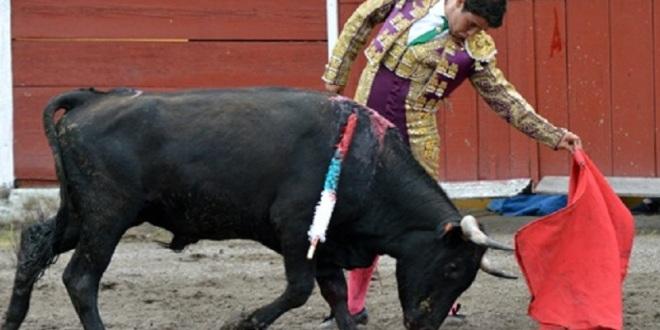 Enfrenta Cuéllar novillo TOREADO en Mexticacán