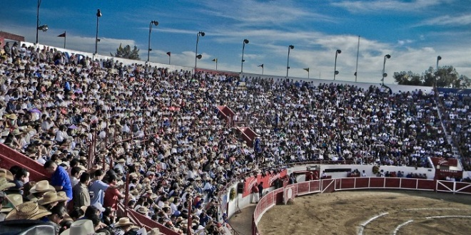 ¡URGENTE! Abogado gana AMPARO contra prohibición de menores a plazas en León