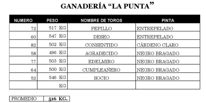 Aprueban los toros de La Punta para el domingo en la México