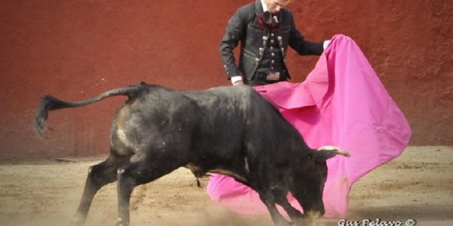 """Midieron fuerzas Talavante y """"El Payo"""""""