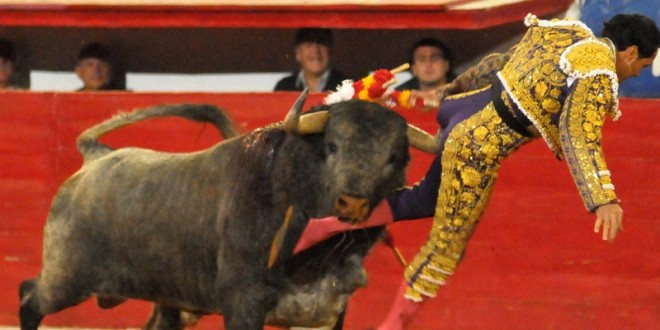 PLAZA MÉXICO: Cornada a 'El Conde' en toro de regalo
