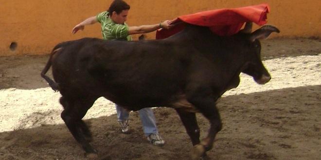 El sueño de un niño se convirtió… En la ilusión de un torero