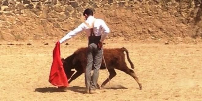 Interesante tienta en la ganadería de Rogelio Castro