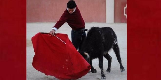 Tienta ANDRE LAGRAVERE en la finca española de Concha y Sierra