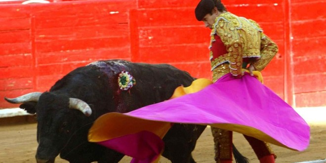 SUMA PIZARRO fechas tras TARDES TRIUNFALES