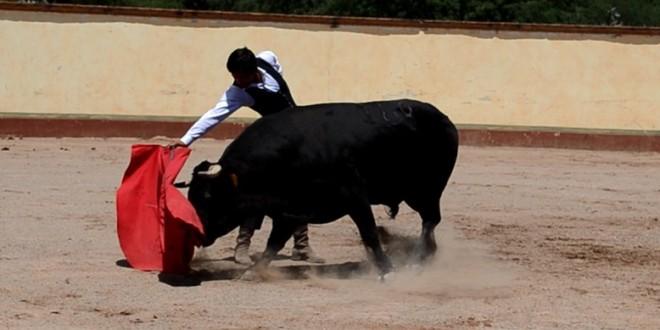 Tienta Gerardo Adame en diversas ganaderías