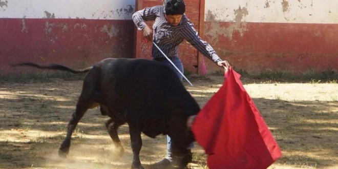 LUIS CONRADO se abre paso en ESPAÑA