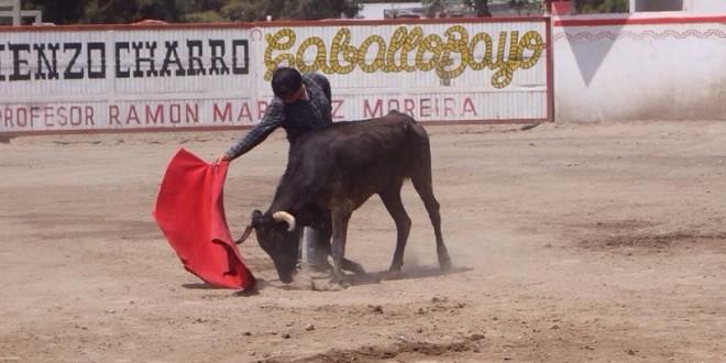 LUIS MIGUEL CUÉLLAR enfrenta siete vacas de RETIENTA (*Fotos*)