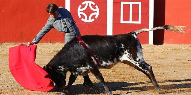 La firmeza de Fabián Barba, ante las vacas de Cesar Rincón