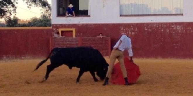 Antonio Romero, al campo bravo español; visita la ganadería de Albarreal