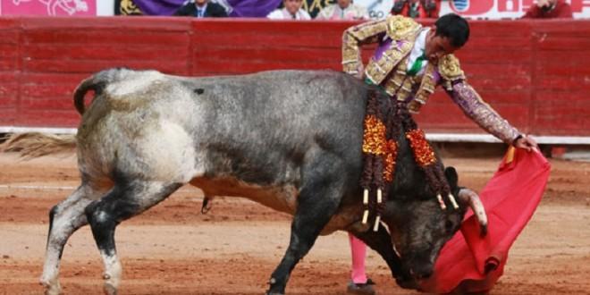 Encierro de guadalajara 2015 - 3 part 8
