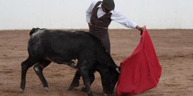 EL MAESTRO ZOTOLUCO SE PREPARA EN EL CAMPO BRAVO