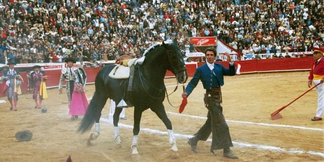 MURIÓ el extraordinario caballo CAGANCHO (*Fotos*)