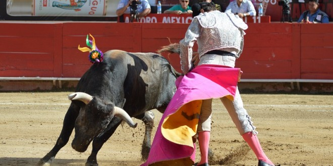 DIEGO EMILIO, convencido de lo que quiere ser como torero