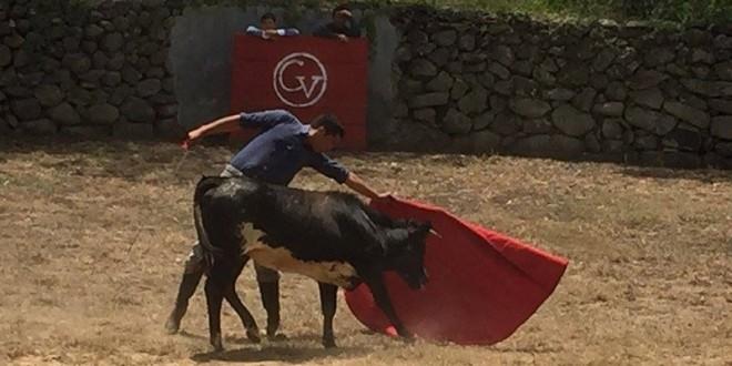 Aplaza festejo de ALMOLOYA y ZÚÑIGA tienta en GONZALO VEGA