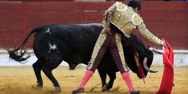 Triunfa Joselito en el coso español de DAIMIEL