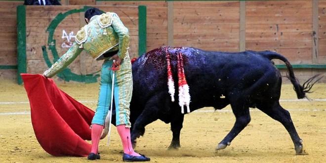Adame torea el 5 de octubre en Madrid