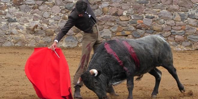 Enfrenta FERMÍN RIVERA bravo novillo en el CAMPO BRAVO
