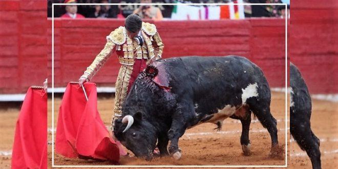 DIEGO URDIALES, 'ENTORILADO' en Formafición Toros