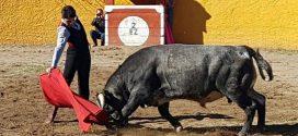 Ángel Gabriel, el sábado en las vacadas de Morelia