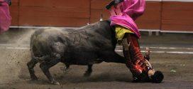 HUAMANTLA: Orejas a El Zapata y Flores; sufre Angelino paliza pero escucha gritos de ¡torero, torero! (*Fotos*)