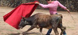 Tienta Rodrigo Ochoa en la ganadería de GONZALO VEGA (*Fotos*)