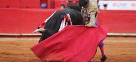 PLAZA MÉXICO: Dura prueba para los novilleros; triunfa Román y sale a hombros (*Fotos*)
