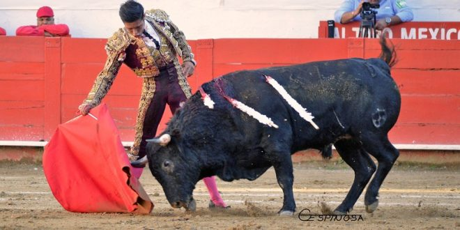 Para José María Pastor, el único trofeo de la tarde en Guadalajara (*Fotos*)