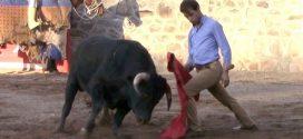 TOREA MACÍAS en el campo tras CORNADA EN EL CUELLO; reaparece el sábado en PACHUCA (*Fotos y Video*)