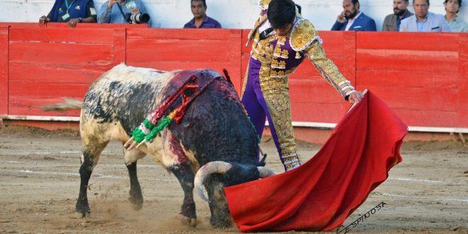Todos triunfan en Guadalajara (*Fotos*)