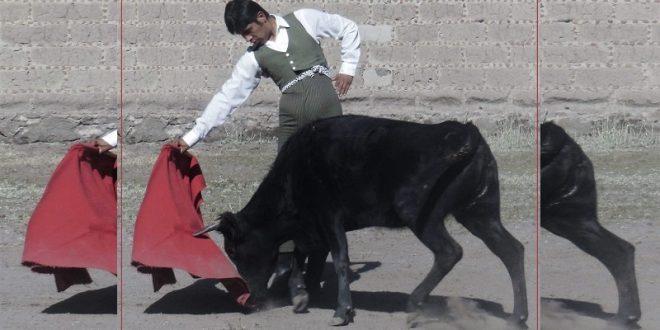El novillero Manolo Serna, en pie de lucha