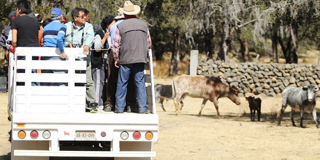 ¡INVESTIGADORES VISITAN la ganadería de PIEDRAS NEGRAS! (Fotos*)