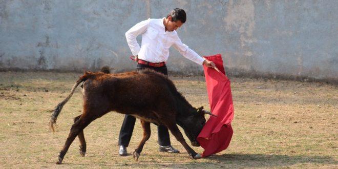 Tienta Silveti en Los Cués previo al compromiso dominical en Guadalajara (*Fotos*)