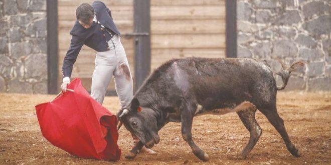 PLAZA MÉXICO: Arturo Macías, en busca del toreo más puro