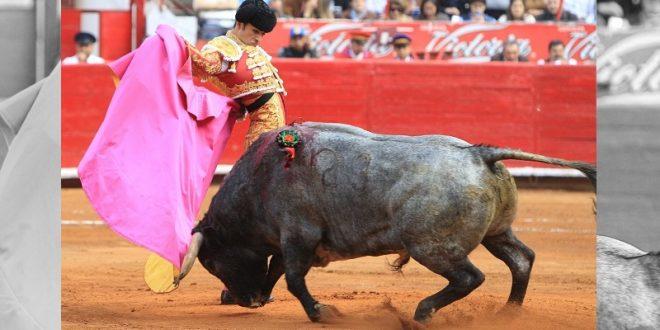 Arturo Macías, hoy, en Saint Vincent de Tyrosse, Francia, con toros de MIURA y PALHA