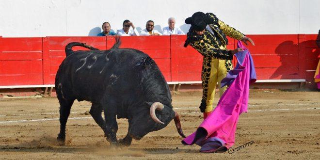Sendos trofeos a Flores y Adame ante serio encierro de Barralva, en Guadalajara
