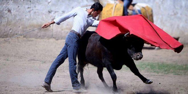 Gutiérrez, bien preparado al coso grande