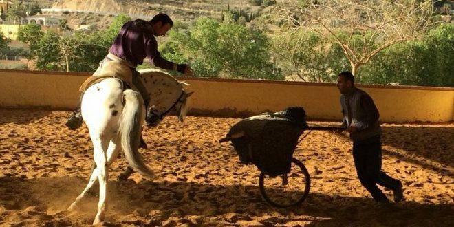 ¡ANDY CARTAGENA ya entrena a caballo y se mantiene firme para reaparecer el día 5! (*Fotos*)