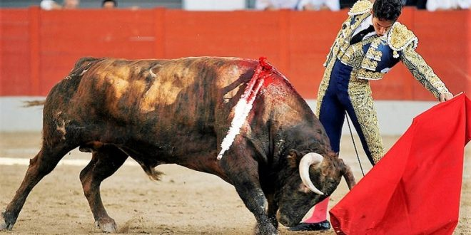 Anuncian seis corridas de toros en cosos campechanos