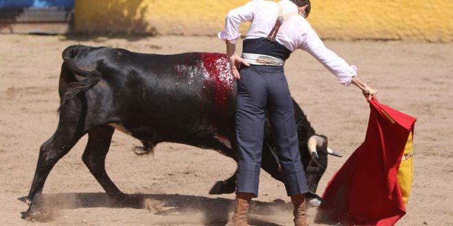 Tienta español Robledo previo a debut en San Miguel de Allende